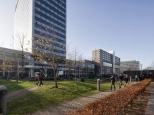 Erasmus University Rotterdam IHS 5