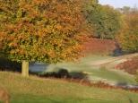 Kent in Autumn