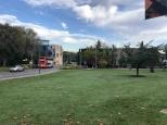 Univerzita v Anglicku - Surrey 5