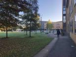 Univerzita v Anglicku - Surrey 8